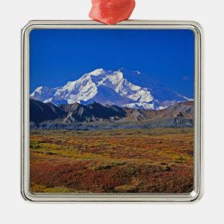 Parque nacional del monte McKinley Denali, Alaska Adorno Cuadrado Plateado