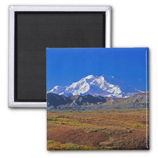 Parque nacional del monte McKinley Denali, Alaska Imán Cuadrado