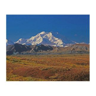 Parque nacional del monte McKinley Denali, Alaska Impresión En Madera