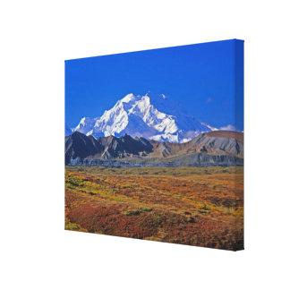Parque nacional del monte McKinley Denali, Alaska Impresiones En Lona Estiradas