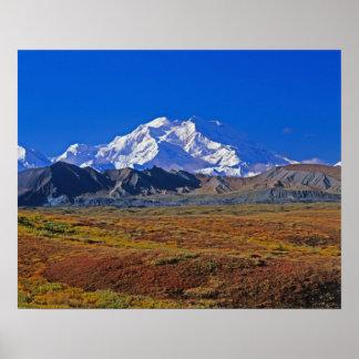 Parque nacional del monte McKinley Denali, Alaska Póster