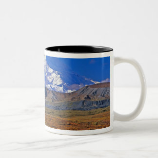 Parque nacional del monte McKinley Denali, Alaska Taza De Dos Tonos