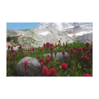 Parque nacional del Monte Rainier, el Monte Lona Envuelta Para Galerias
