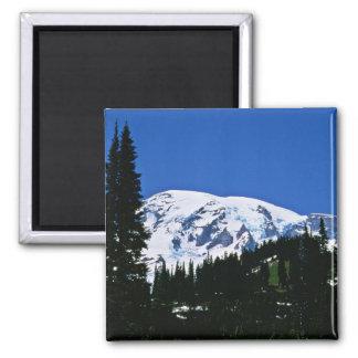 Parque nacional del Monte Rainier Iman