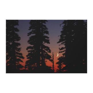 Parque nacional del Monte Rainier, luna creciente Impresión En Lienzo Estirada