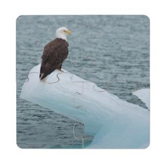 Parque nacional Eagle calvo del Glacier Bay Posavasos De Puzzle