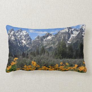 Parque nacional magnífico de Teton Almohadas