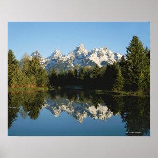 Parque nacional magnífico de Teton gama de Teton Posters