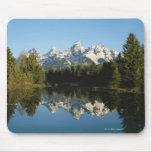Parque nacional magnífico de Teton, gama de Teton, Tapete De Ratón
