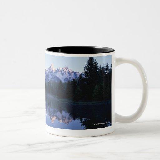 Parque nacional magnífico de Teton, gama de Teton, Tazas