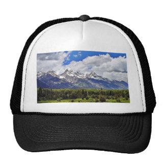 Parque nacional magnífico de Teton Gorro