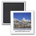 Parque nacional magnífico de Teton - invierno Iman