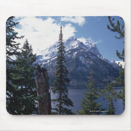 Parque nacional magnífico de Teton Tapetes De Ratón