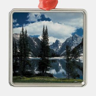 Parque nacional magnífico de Teton, Wyoming Adorno Cuadrado Plateado