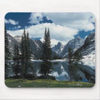Parque nacional magnífico de Teton, Wyoming Mouse Pads