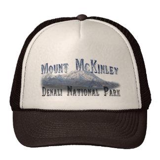 Parque nacional Mt McKinley de Alaska Denali Gorras De Camionero
