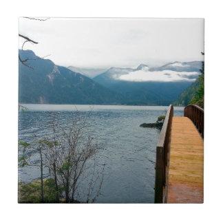 Parque nacional olímpico del cuenco de sacador de azulejo cuadrado pequeño
