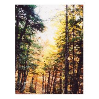 Parque Nacional Ordesa Postcards