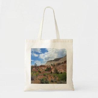 Parque nacional Utah de Zion de la roca pulida