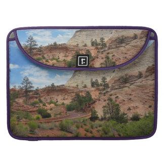 Parque nacional Utah de Zion de la roca pulida Fundas Macbook Pro