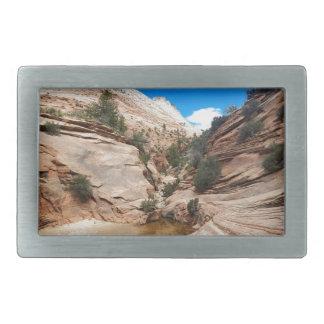 Parque nacional Utah de Zion de la roca pulida Hebillas De Cinturon Rectangulares