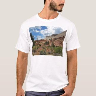 Parque nacional Utah de Zion de la roca pulida Playera