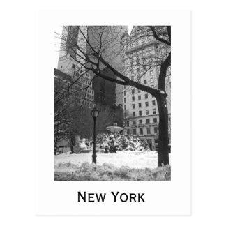 Parque Nevado en Nueva York Tarjeta Postal