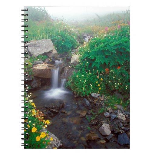 Parque olímpico de la niebla de la cascada que flu cuadernos