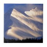 Parque que susurra el lago Ain Kenai Alaska summit Tejas Cerámicas
