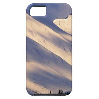 Parque que susurra el lago Ain Kenai Alaska summit iPhone 5 Case-Mate Protector
