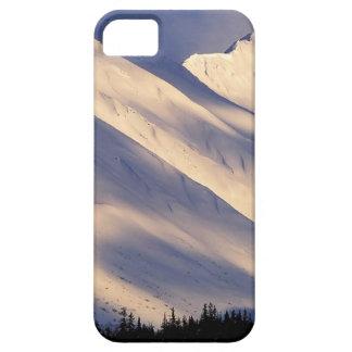 Parque que susurra el lago Ain Kenai Alaska summit iPhone 5 Case-Mate Protectores