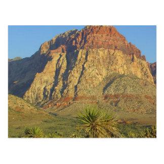Parque rojo de las rocas cerca de Vegas Tarjeta Postal