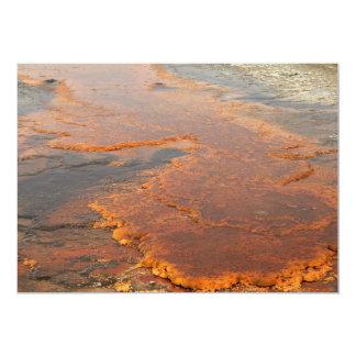 """Parque rojo de Yellowstone del agua mineral Invitación 5"""" X 7"""""""