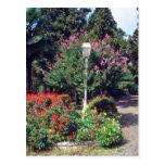 Parque rojo de Yildiz, flores de Estambul Postales