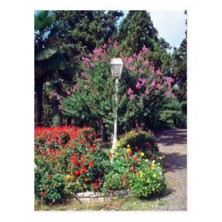 Parque rojo de Yildiz, flores de Estambul Tarjeta Postal