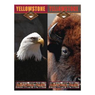 Parque-Señales del nacional de Yellowstone Comunicado Personal