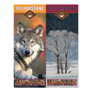 Parque-Señales del nacional de Yellowstone Comunicados Personalizados