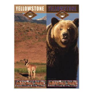 """Parque-Señales del nacional de Yellowstone Invitación 4.25"""" X 5.5"""""""