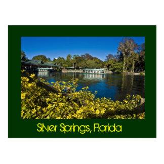 Parque temático de la naturaleza de Silver Springs Postales