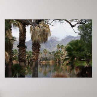 Parque Tucson, Az de Caliente de la aguamarina Poster