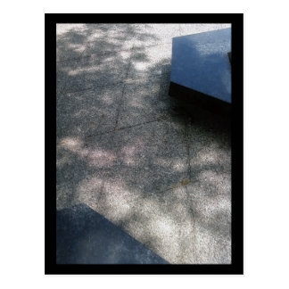 parque verde oliva:: verano tarjeta postal