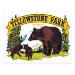 Parque Wyoming los E.E.U.U. de Yellowstone del vin Tarjeta Postal