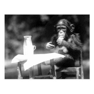 Parque zoológico de consumición del nacional del v tarjeta postal