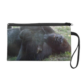 Parque zoológico de Kansas City del gorila de la t