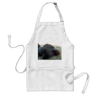 Parque zoológico de Kansas City del gorila de la t Delantal