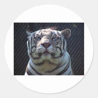 Parque zoológico de Philadephia Pegatina Redonda