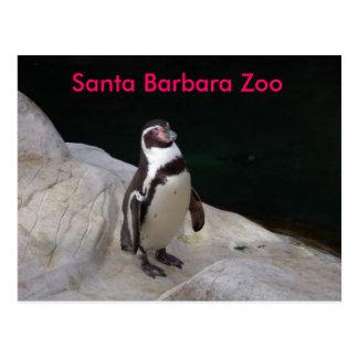 Parque zoológico de Santa Barbara Tarjetas Postales