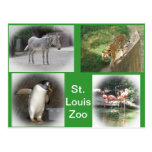 Parque zoológico de St. Louis Postales