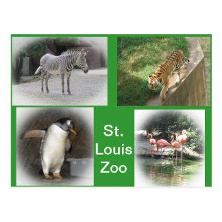 Parque zoológico de St. Louis Tarjetas Postales
