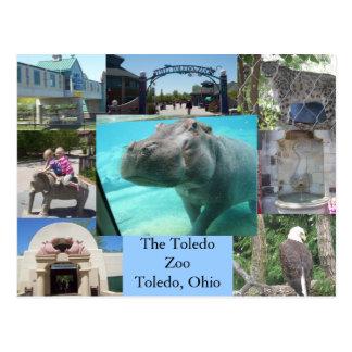 Parque zoológico de Toledo Tarjetas Postales